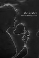meshes cover